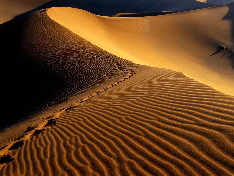 Footprints-Namib-Desert-Namibia-Africa